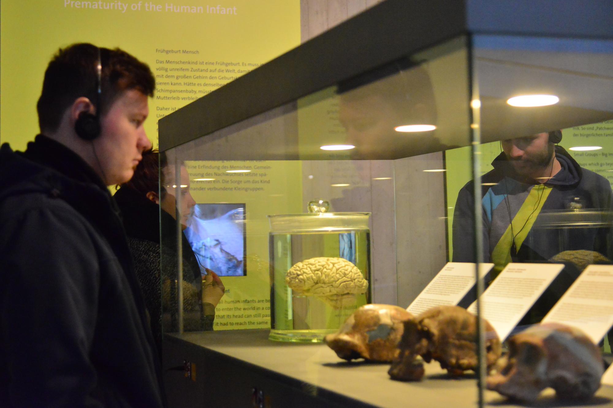 Neandertalmuseum, Januar 2017 2