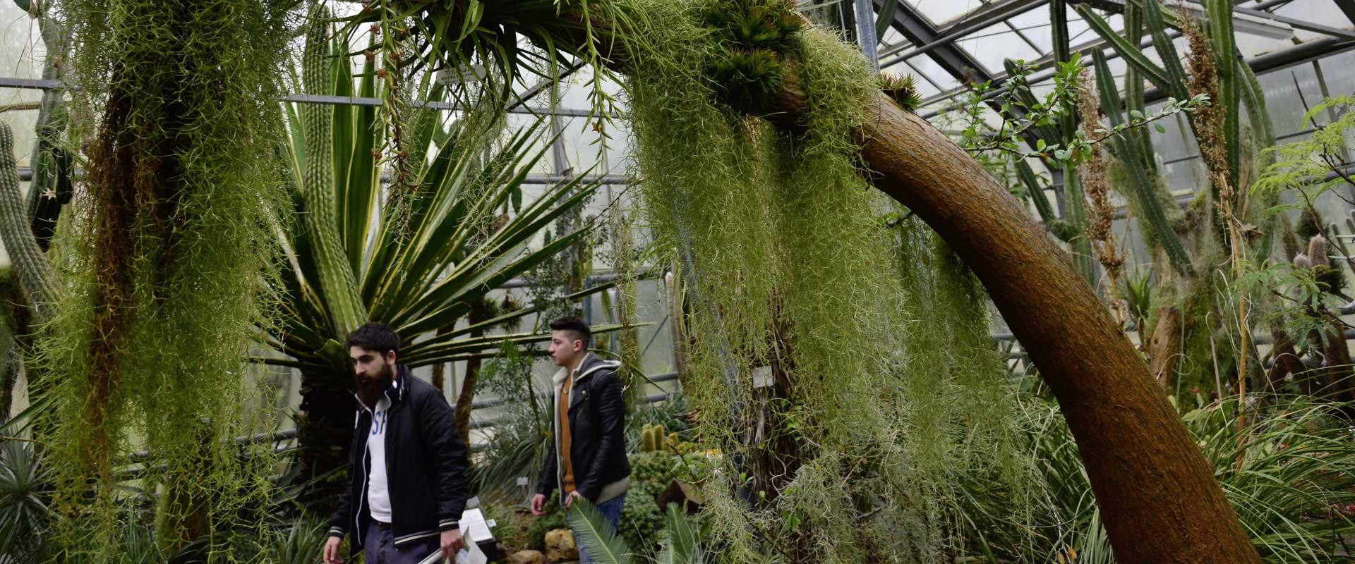 Exkursion Botanischer Garten Bochum